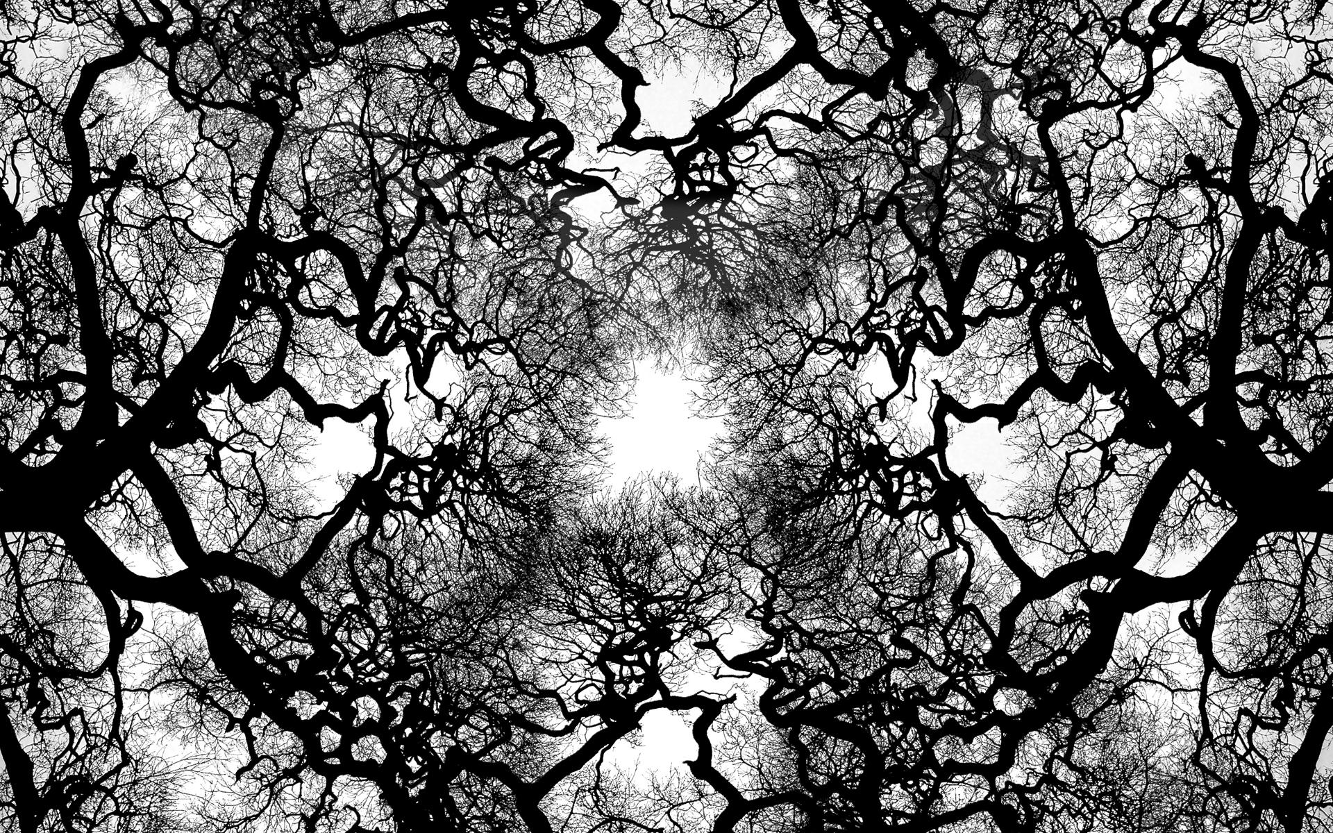 Tree_veins