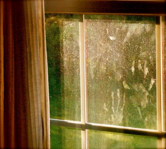 Fingerprints on Window